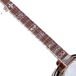 Five Stringed Banjo